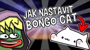 Jak nastavit Bongo Cat a jak si ji udělat custom!